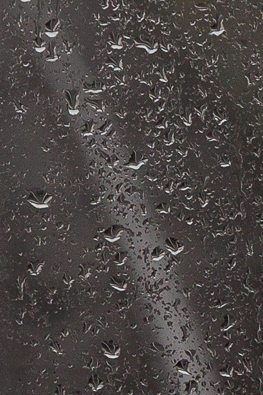 (T)RainDETAIL.WEB.jpg