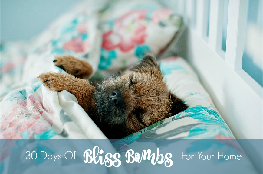 30 Days Of Bliss Bombs For Your Home