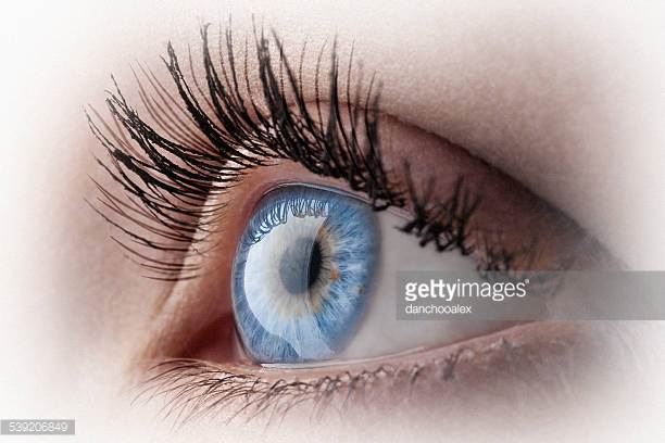 Choose perfect vision -