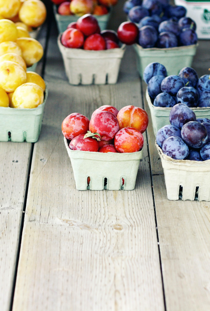 Ontario Fruitstand | Tara O'Brady