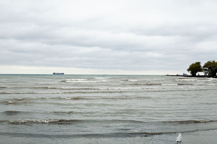 Ships on Lake Ontario | Tara O'Brady