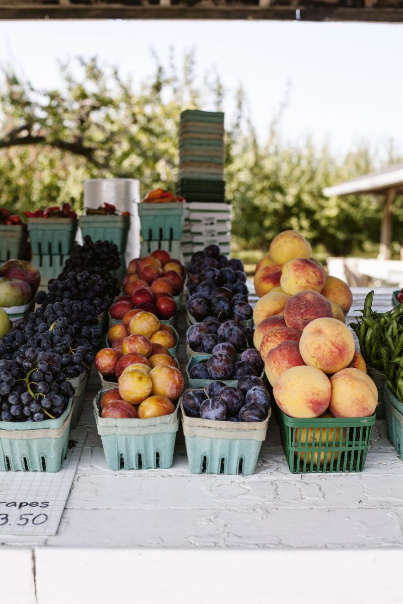 Quiet Acres Farm Stand | Tara O'Brady