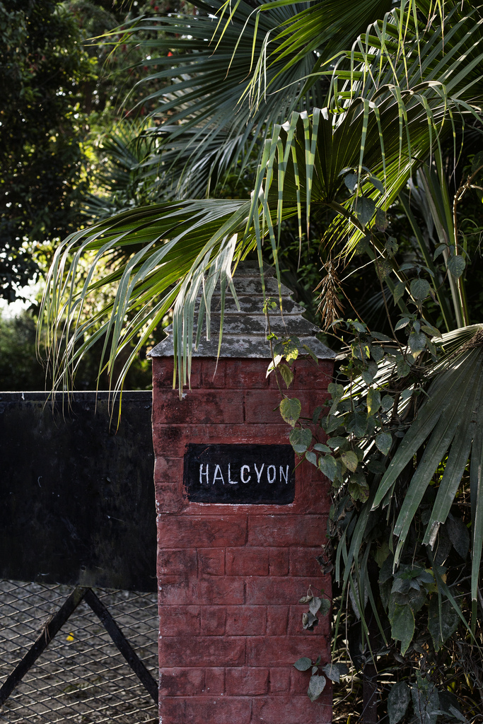Halcyon Gate | Tara O'Brady