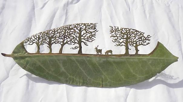 pod0036-leaf-cutout-lorenzo-duran.jpg