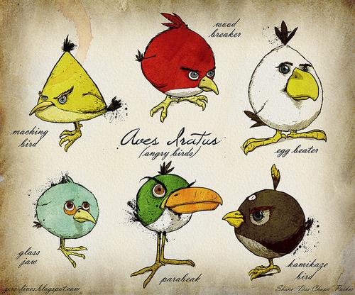 500x_angrybirdsdarwin.jpg