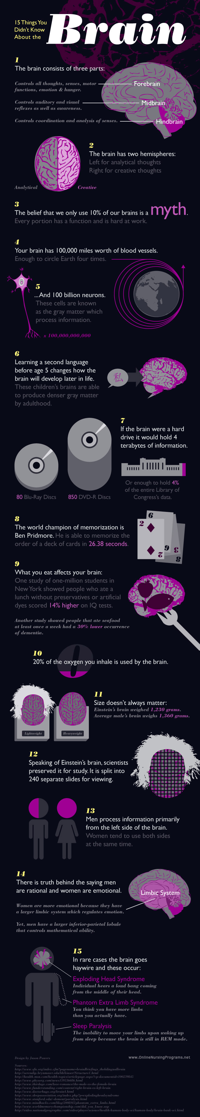 15-things-about-the-brain.jpeg