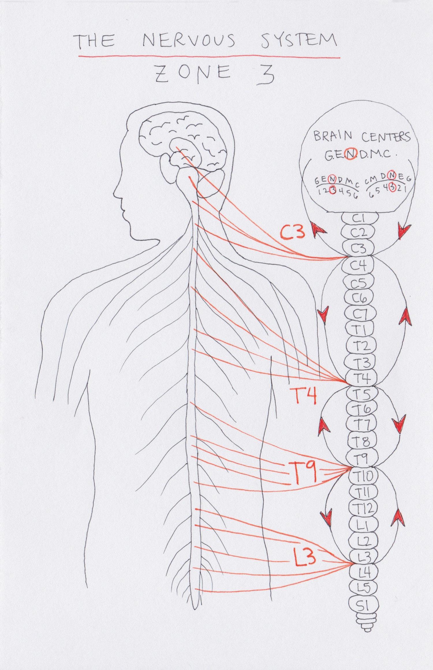 Zone 3 The Nervous Zone Judah St Clinic