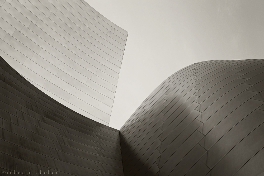 Grey Gehry Curves.jpg