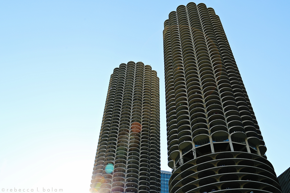 Chicago Wilco Shot.jpg