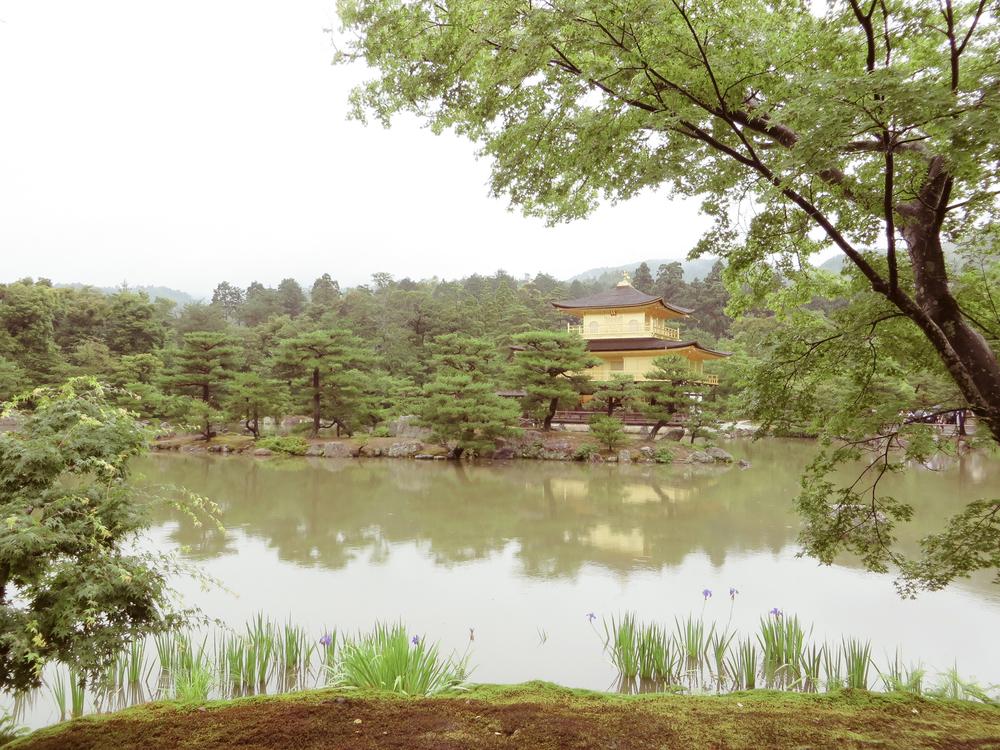 japan-31.jpg