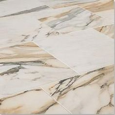 Calacatta Gold  12 by 24  Polished.jpg