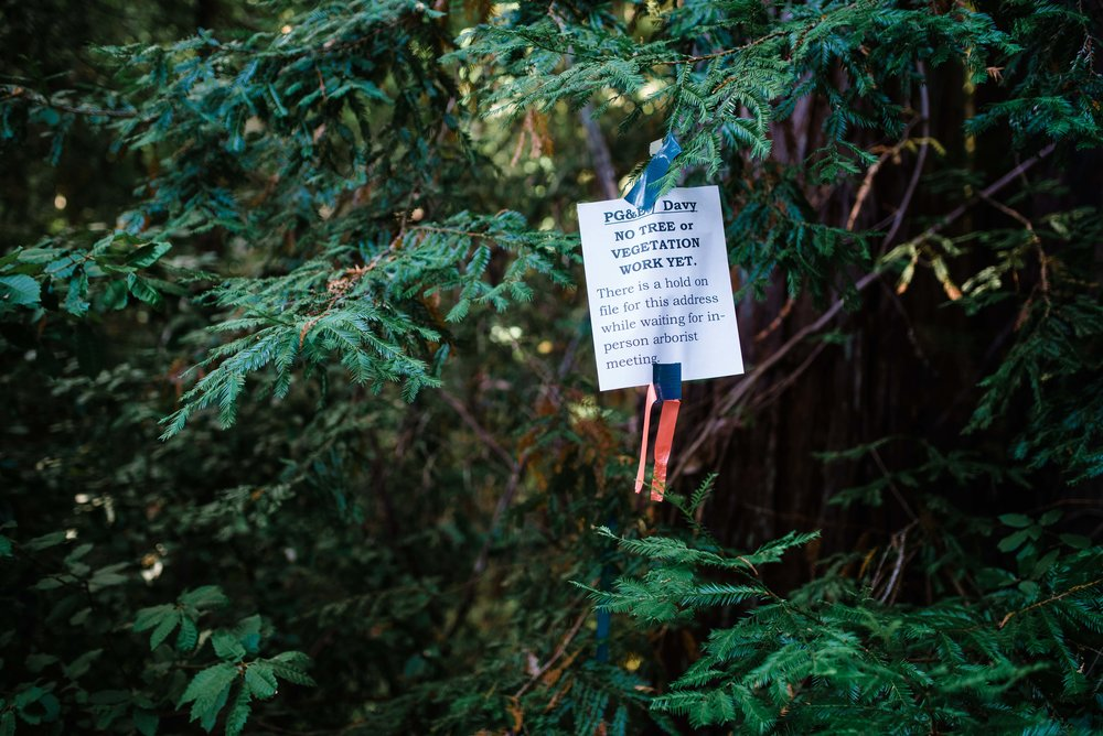 Property owners make their voices known through community meetings and hand-made signs placed upon marked trees.