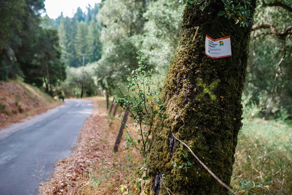 "Sign reads ""Extreme Fire-Threat Area; Wildfire Safety Work Underway"""