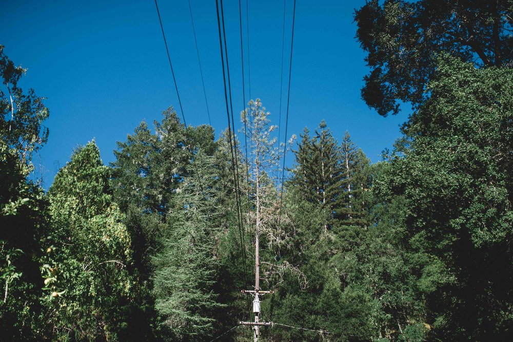 High voltage pole and the trees that surround it in the Santa Cruz Mountains. Pacific Gas and Electric has instituted a Community Wildfire Safety Program, with Enhanced Vegetation Work in areas of Extreme Wildfire Threat by reducing vegetation in the area 15 feet from the pole line.