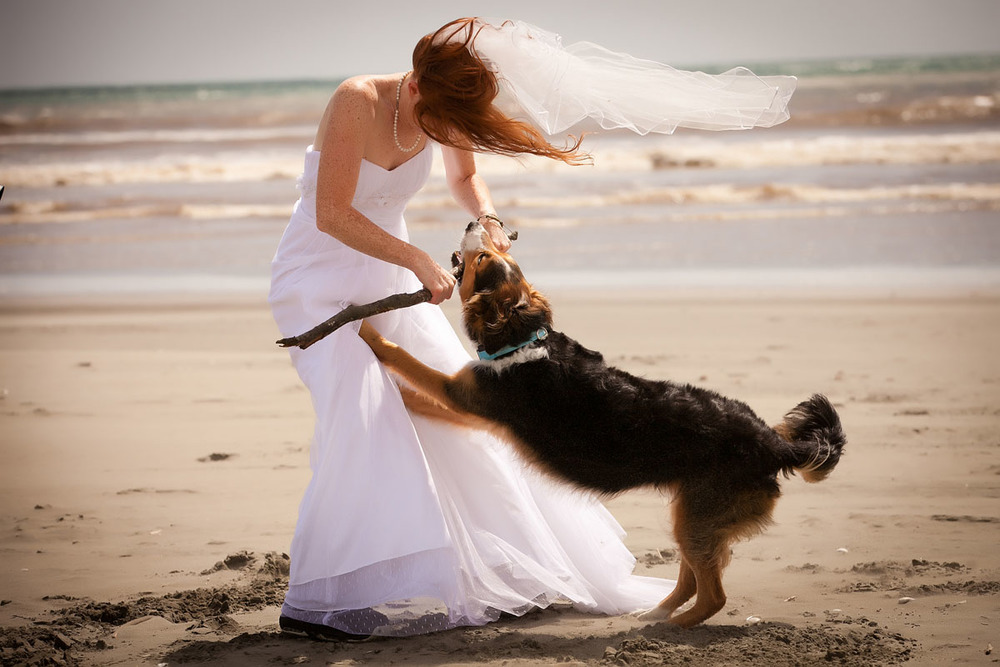 Sarah and her dog wedding photo, adrian de la fuente wedding photography