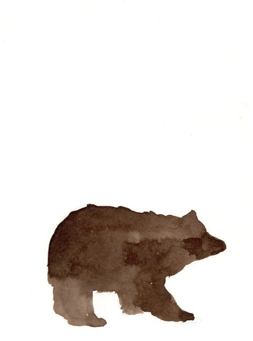 bear lower res.jpg