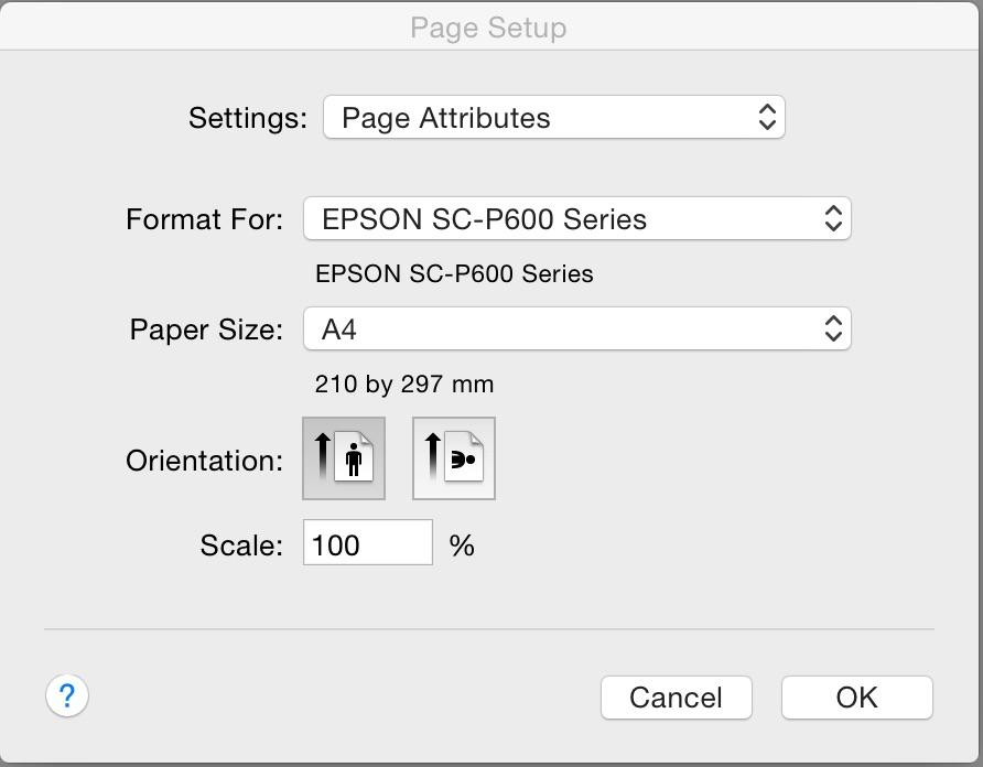 Print page setup.jpg