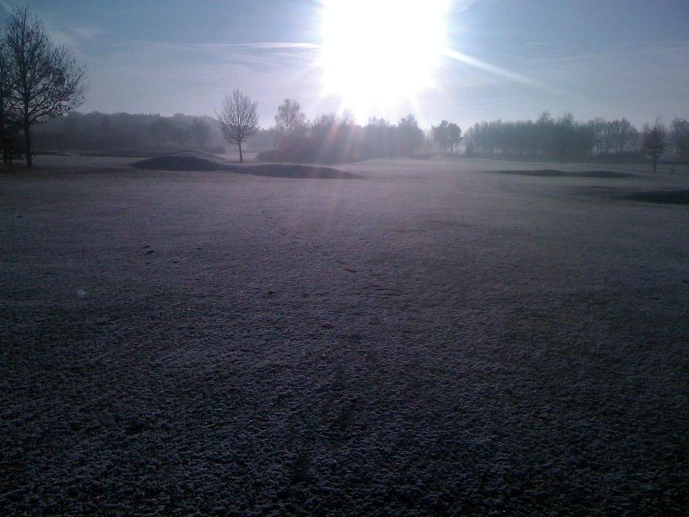 Wintergreens. Heerlijk!!!