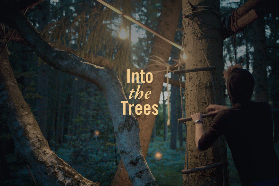 Imagen promocional del evento  Into the trees.