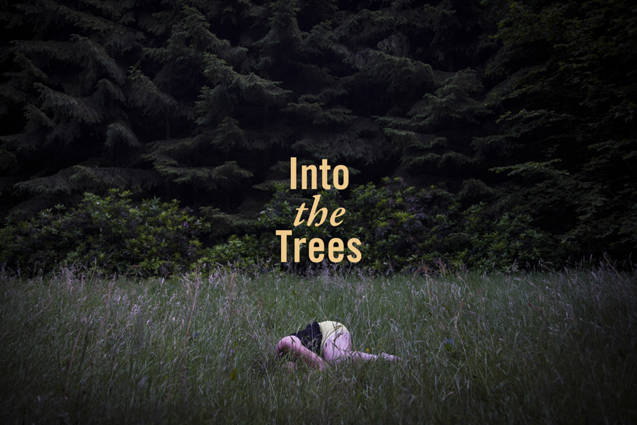 into the trees promo-4.jpg