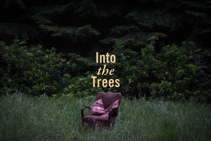 into the trees promo-5.jpg