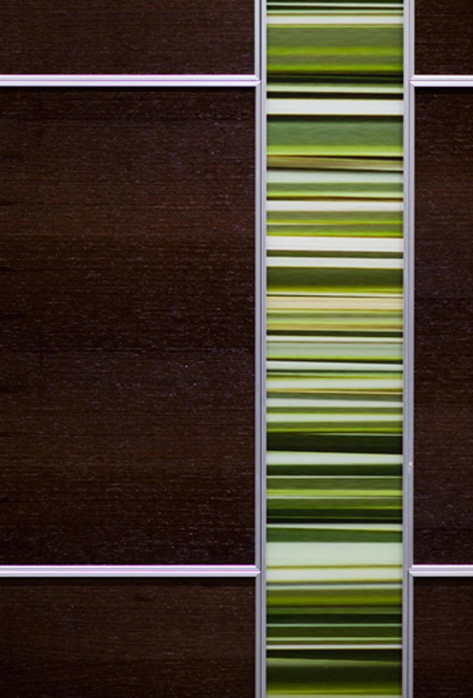 CABS SCALE GRASS CLOSE 8.28.2013.jpg