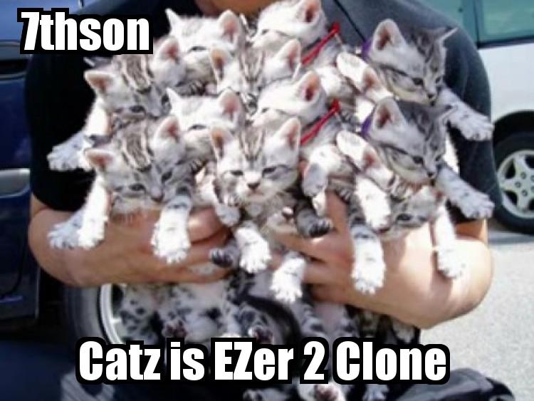 7son cats-41.jpg