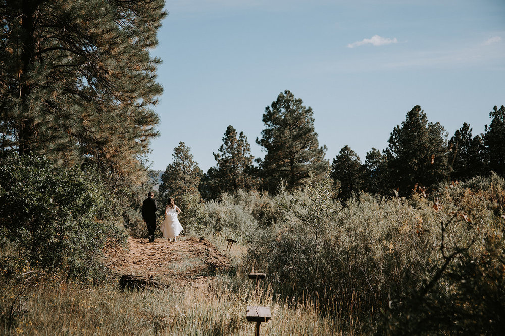 Married couple walking away on a path among bushes and pine trees