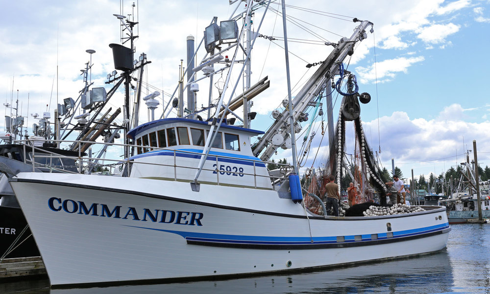 Commander Seine seiner commercial fishing boat Petersburg southeast alaska crew working net harbor