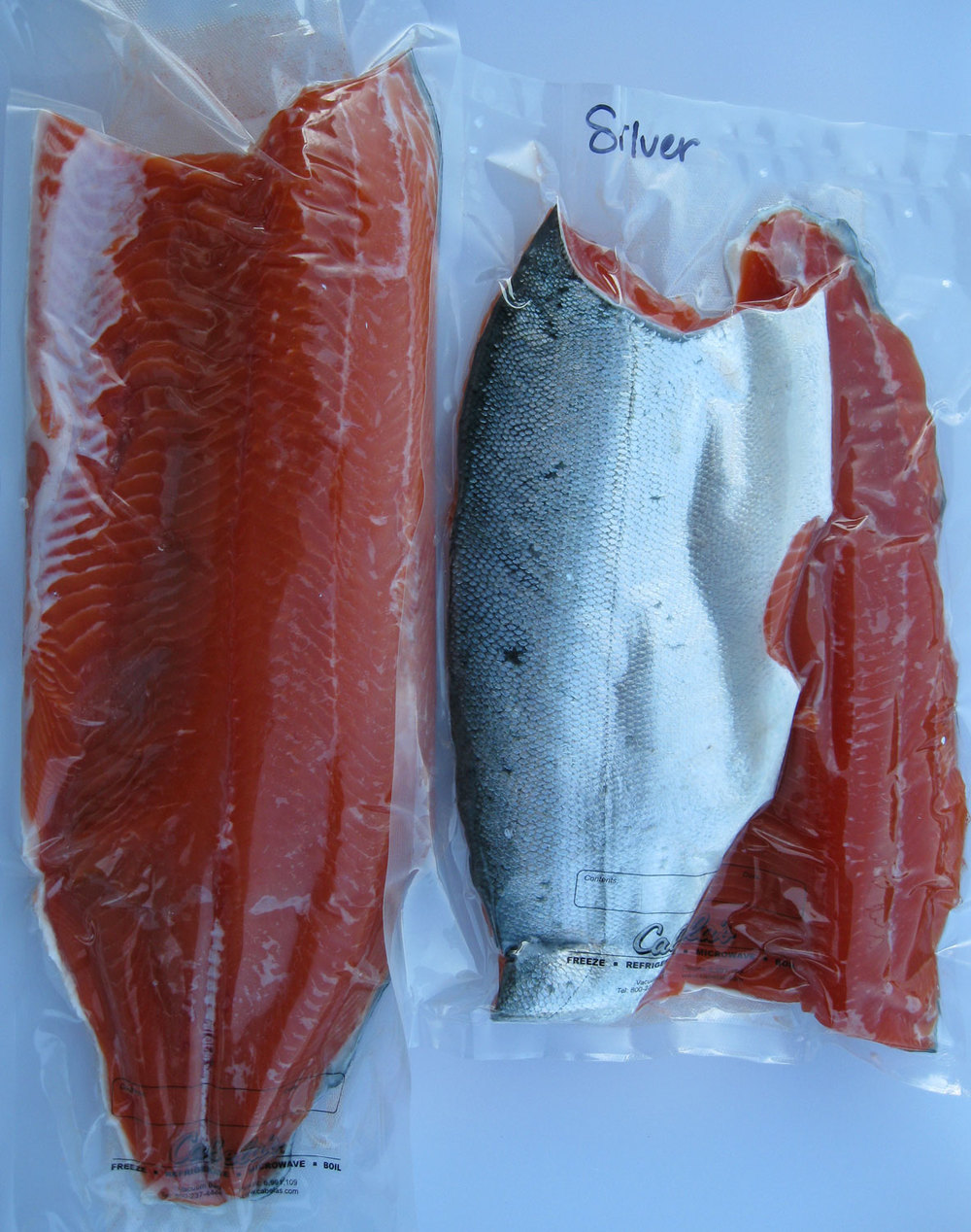 Silver salmon fillets vacuum packed for freezing.