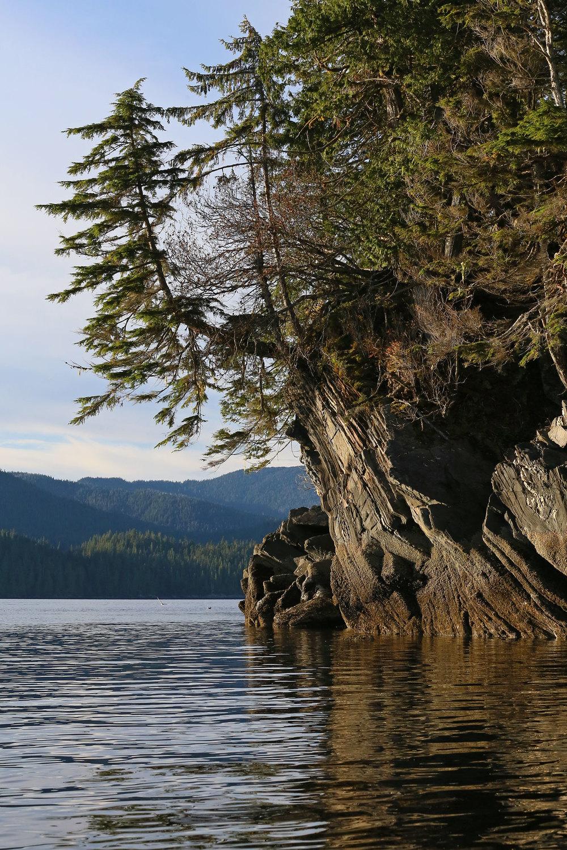 Southeast Alaska shoreline