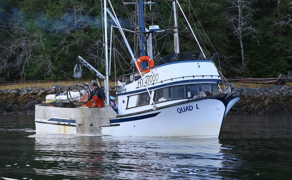 Dungeness_crab_commercial_fishing_2058.jpg