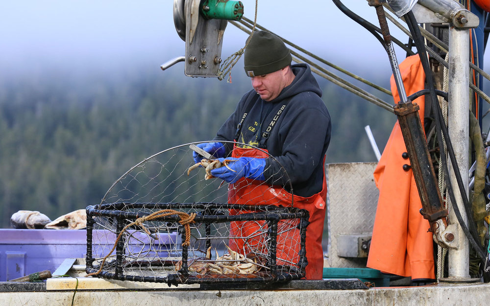 Dungeness_crab_commercial_fishing_2082.jpg