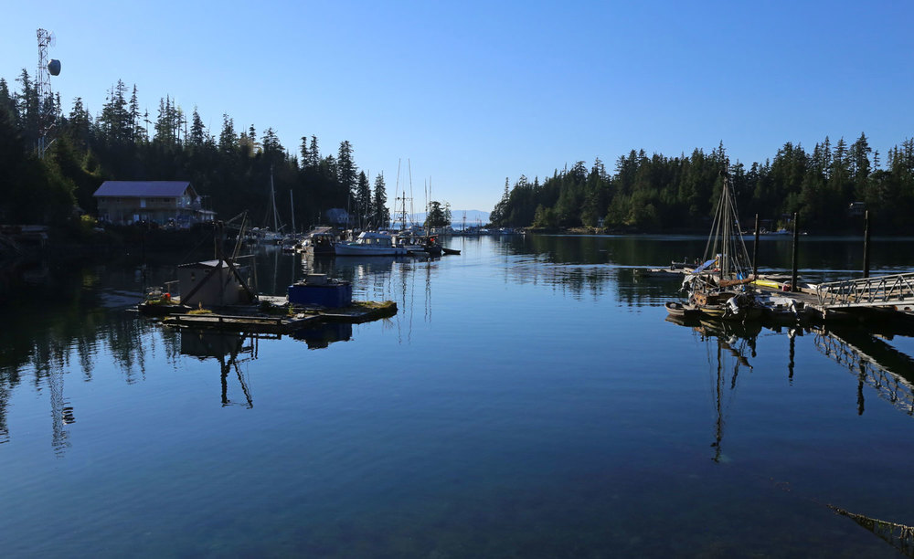 The Wooden Wheel Trading Post is on the left and the State of Alaska dock is on the right.
