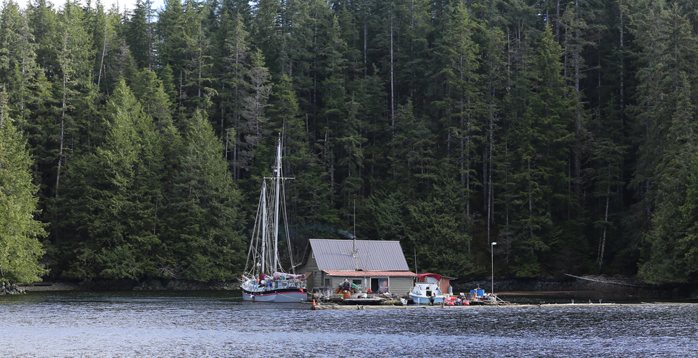 Floathouse and sailboat near Thorne Bay, Alaska. Pretty cool lifestyle, huh?