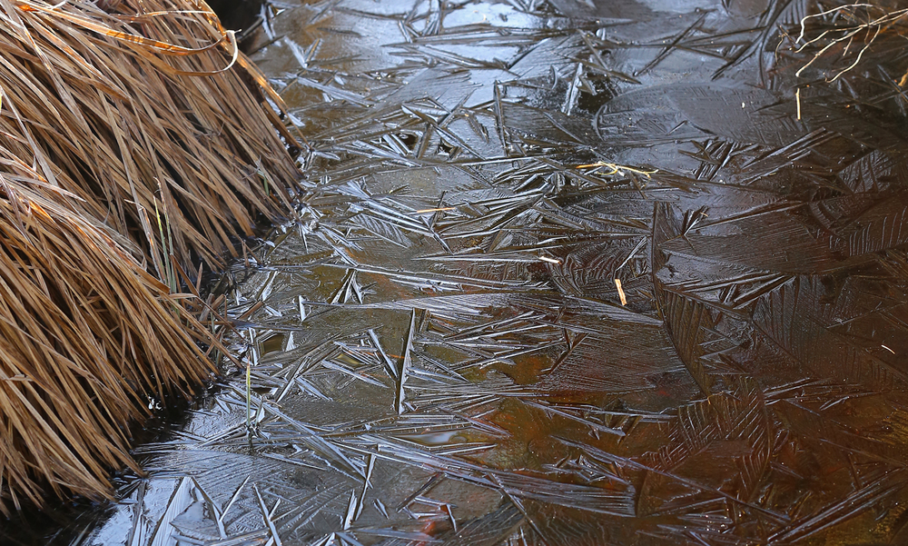creek ice pattern crystalline