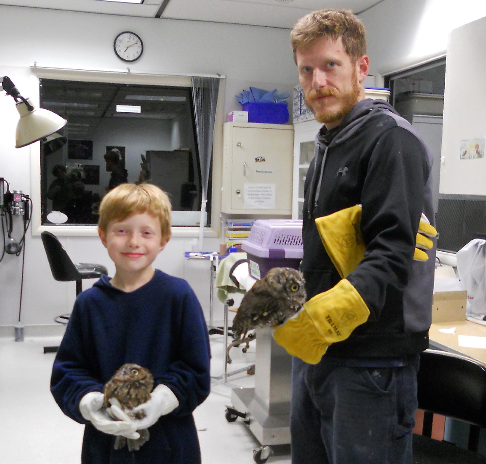 Eliot holding Thorne and Wes holding another screech owl just before releasing them. Photo by Jen Cedarleaf.