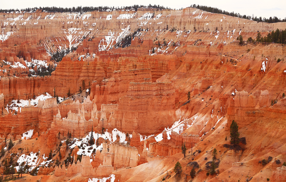 The Bryce Canyon formations are immense. There are tiny specks in this photo that are people! Detail of the center section in the next photo. And yes, those white patches are snow.