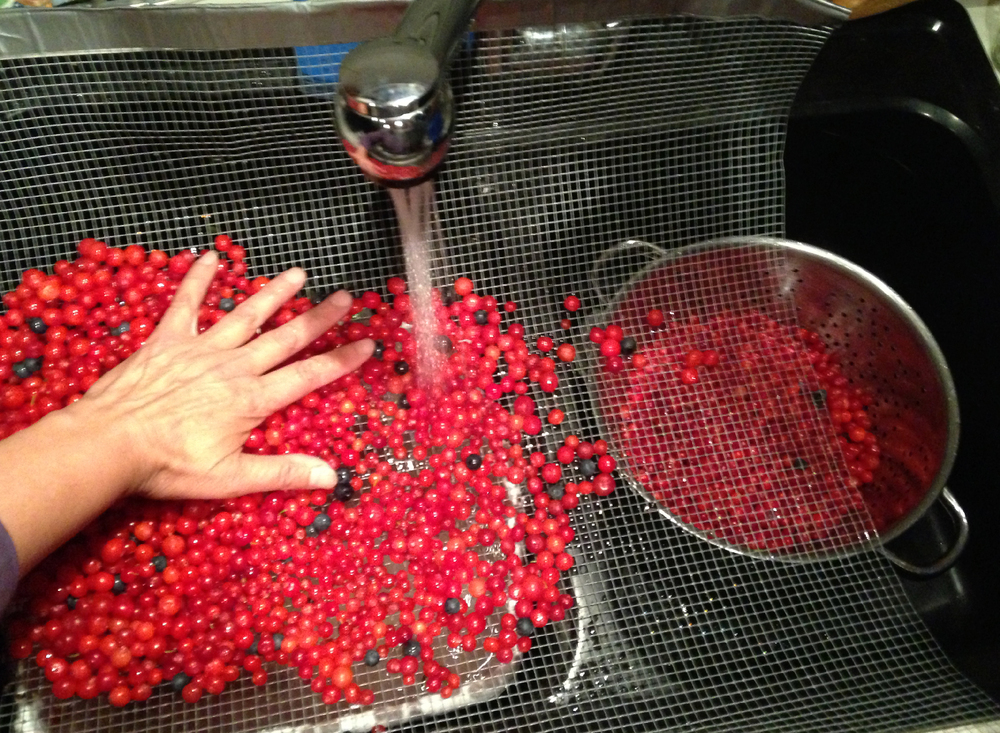 Gently rolling the berries around while rinsing them.