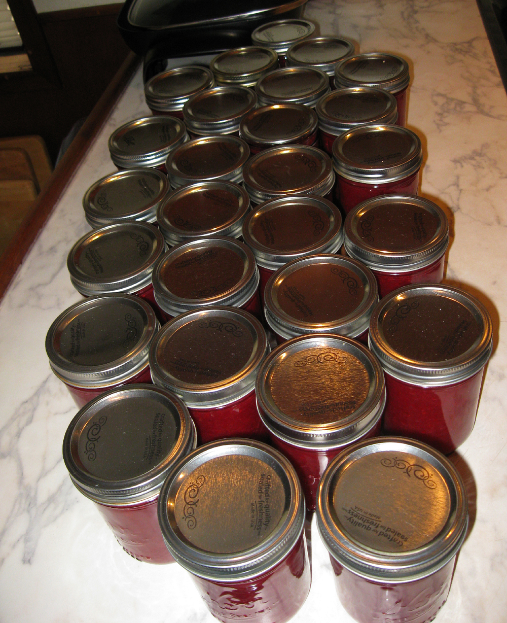 Red huckleberry jam ready for labeling. I thank my wonderful sweetheart for preserving this goodness in jars.