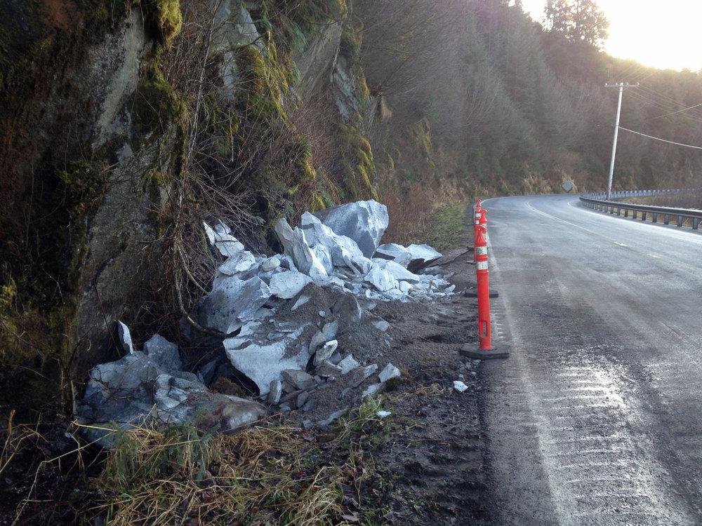 road kill rock guts