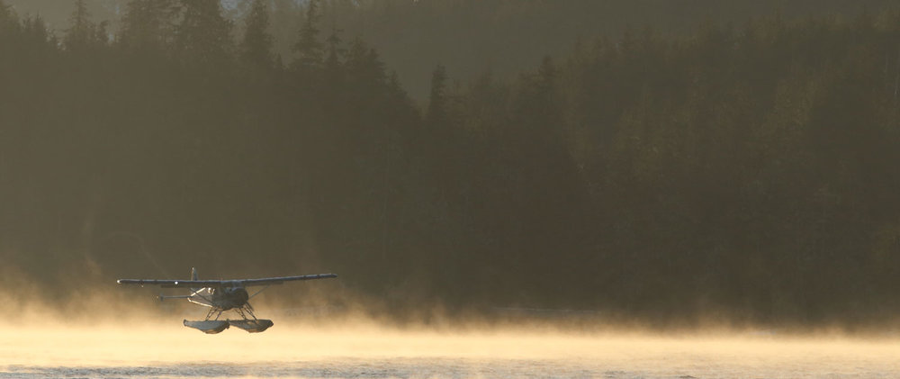 de Havilland Beaver floatplane landing in the mist Southeast Alaska
