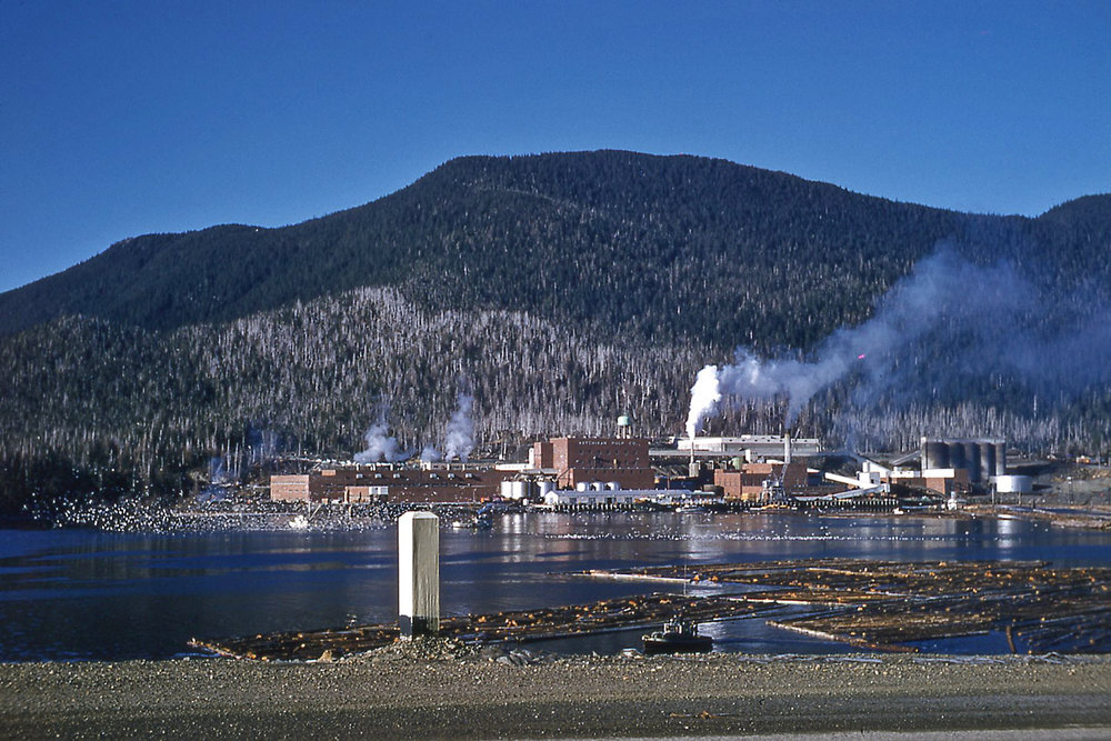 Ketchikan Pulp Company site in the 1950s Alaska