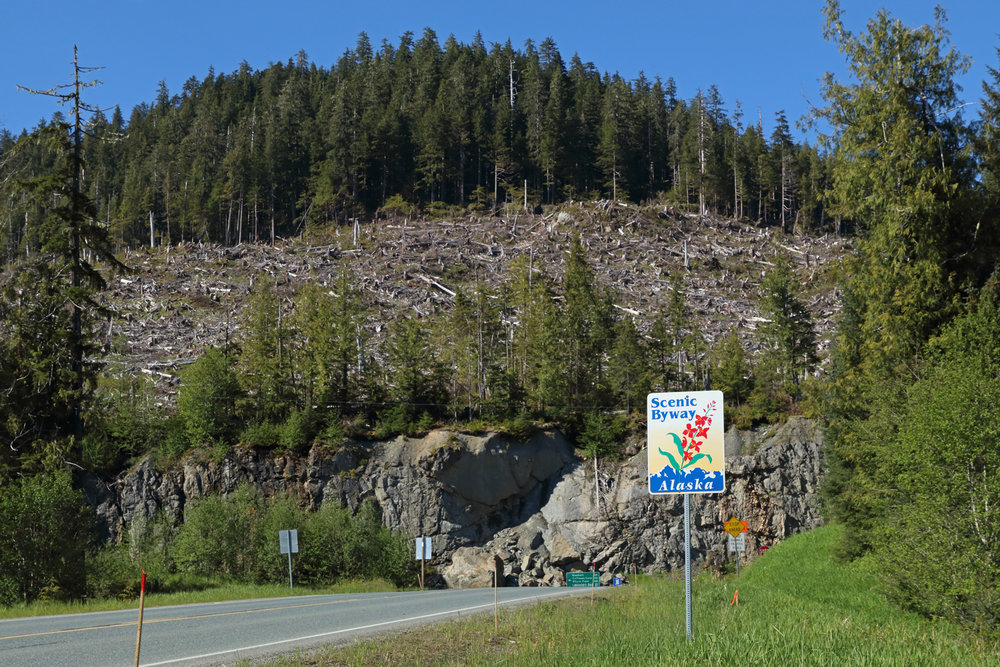 Agencies are sometimes at odds. The Scenic Byway program took a hit when the Alaska Mental Health Trust logged behind the sign.