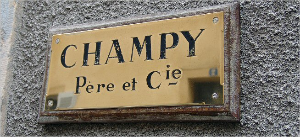 champy01[1].jpg