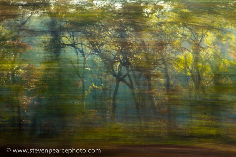 SPPhoto-WEB-Blog--20130828-_D3_9875.jpg
