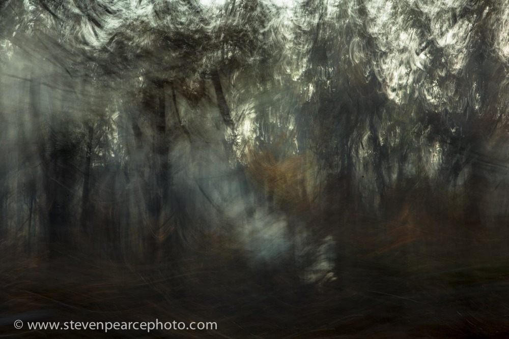 SPPhoto-WEB-Blog--20130828-_D3_9888.jpg