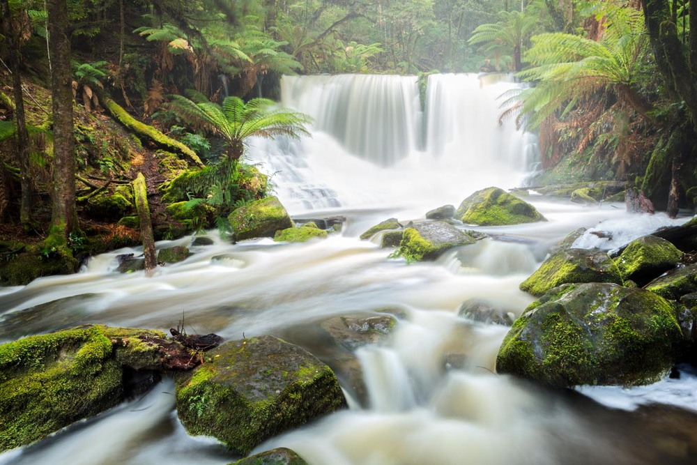 Horseshoe Falls, Mt Field NP, Tasmania
