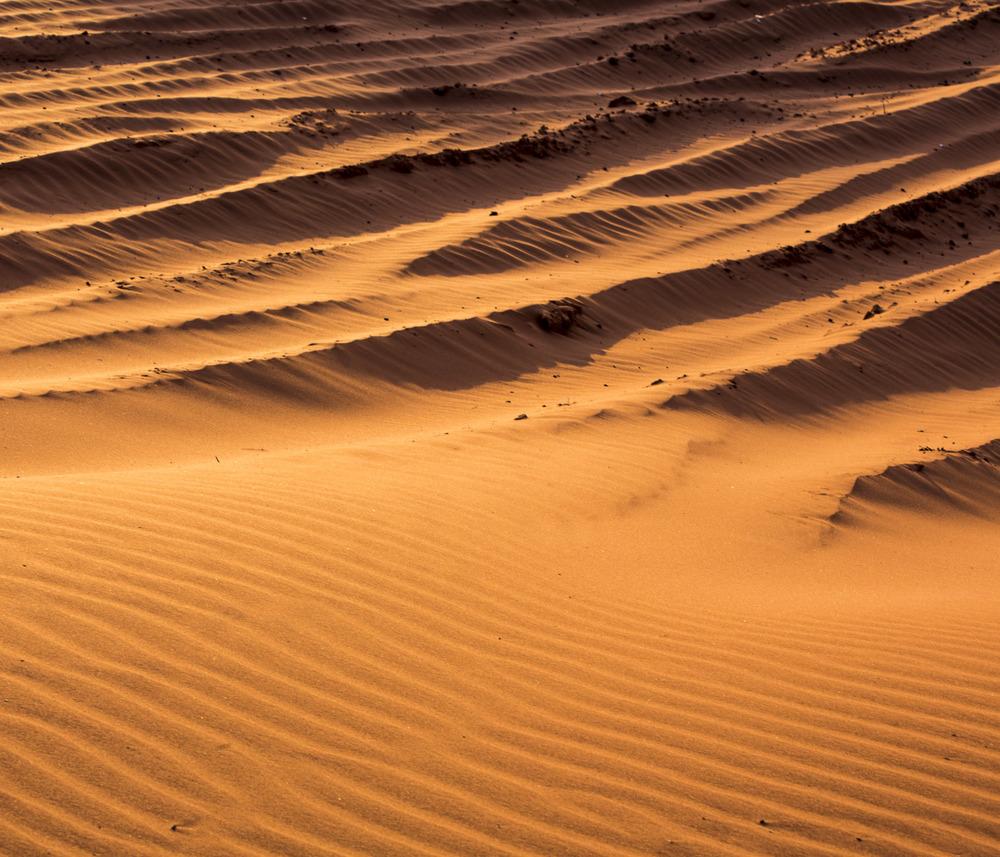 Dunes and 4x4 Tracks
