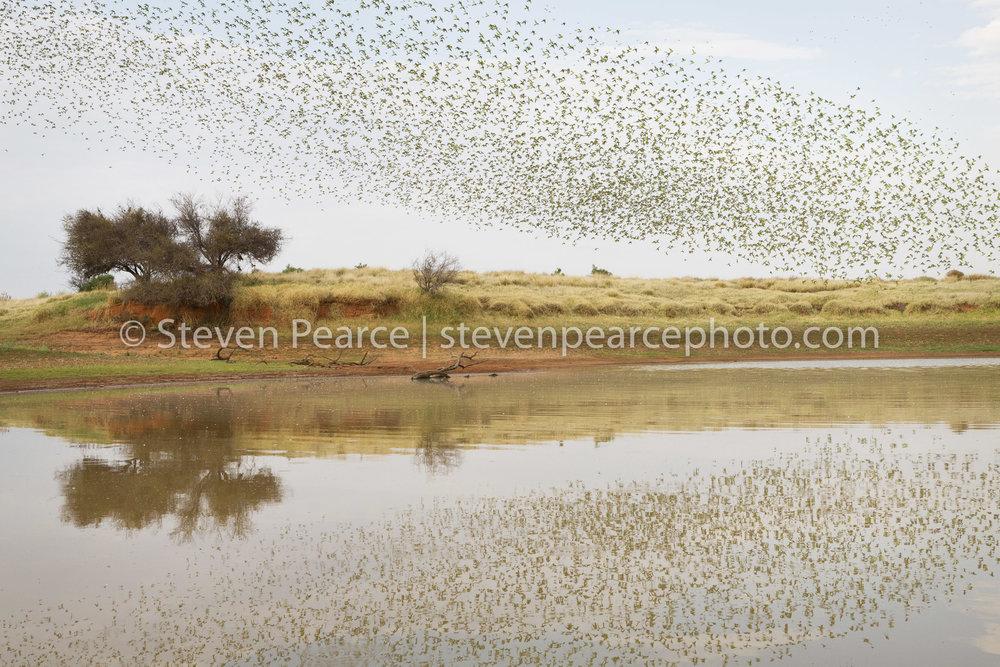 SPPhoto-WEB-20121124-_D3_3581-Edit.jpg